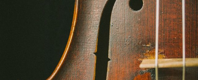 body of violin